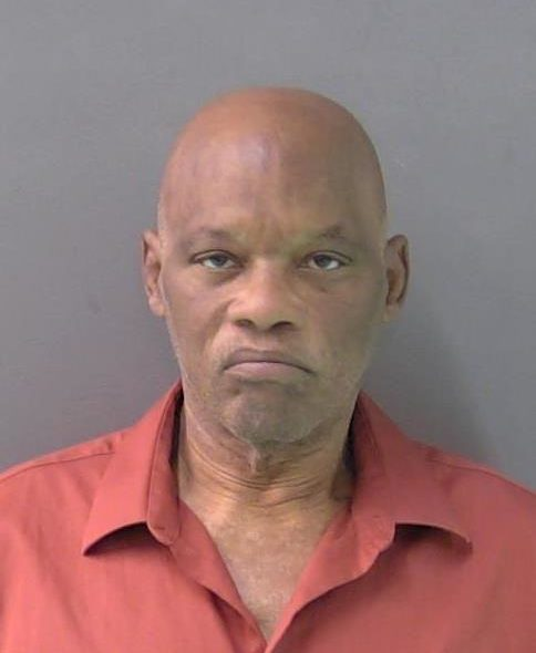 RONALD LEE - PC 32.31 / CREDIT CARD OR DEBIT CARD ABUSE